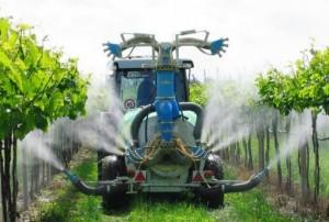 Опрыскивания винограда