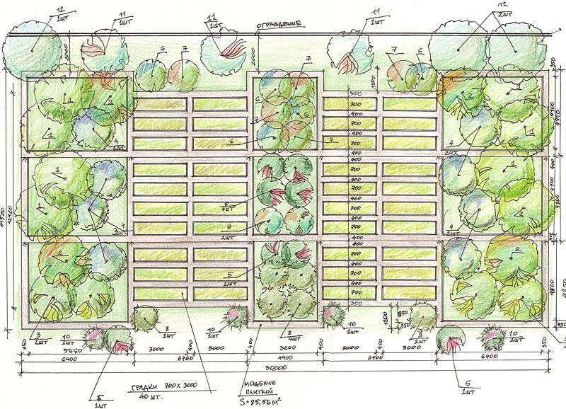 планировка посадки огорода с фото