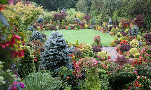 Дачный участок: 33 красивых цветника на даче