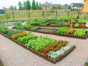 Как сделать красивый огород совоими руками