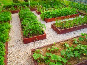 Как сдлать красивый огород своими руками