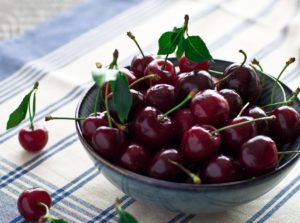 Сорта черешни для Ярославской области
