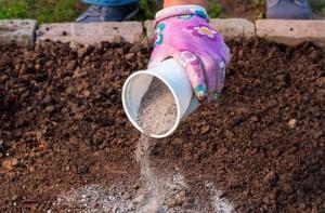 Применение табачной пыли в садоводстве