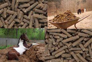 Гранулированный состав лошадиного навоза