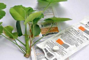 Как применять янтарную кислоту для комнатных растений
