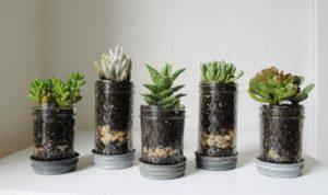 Как сделать дренаж для комнатных растений своими руками