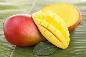 Манго – это ягода, овощ или фрукт