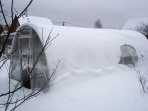 Нужно ли будет закрывать теплицу на зиму из поликарбоната