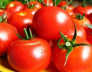 Чем можно обработать помидоры после дождей и холодов