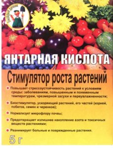 Как используется янтарная кислота для помидоров