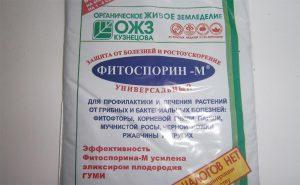 Как правильно применять Фитоспорин для растений