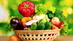 Как вырастить богатый урожай на огороде