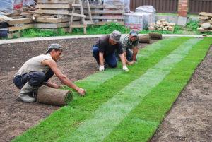 Укладка рулонного газона: для чего нужна и как выполняется
