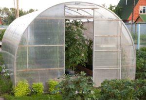 Как правильно выбрать пленку для теплицы на огороде